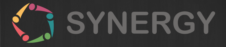 Synergy project logo