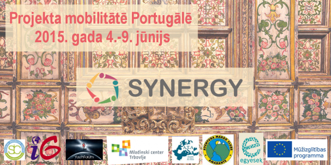 Synergy_mobilitate_Portugale