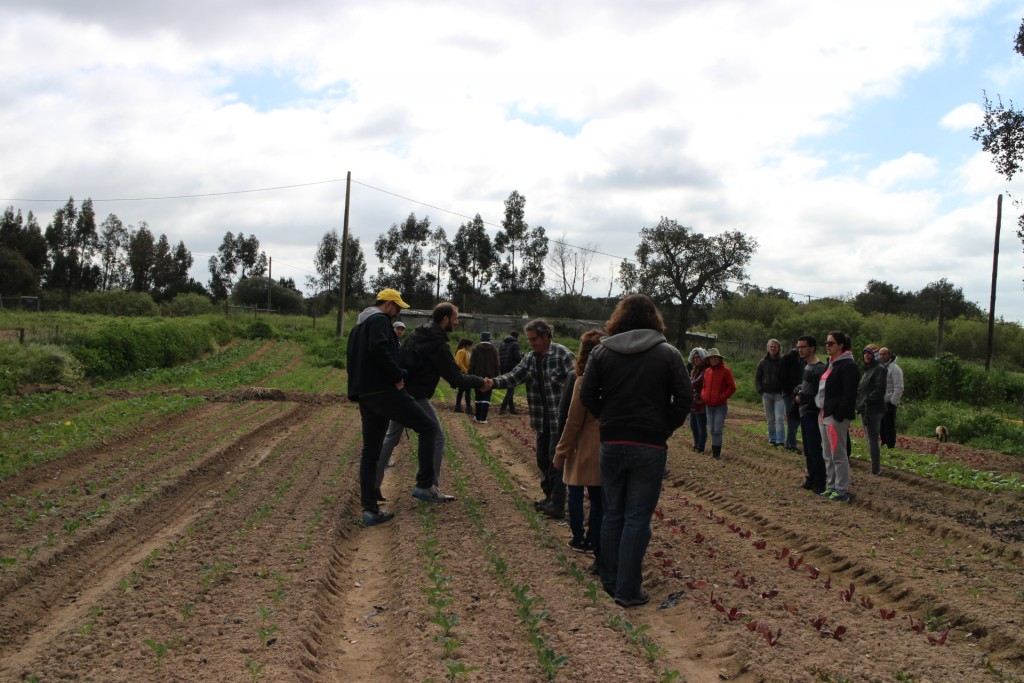 Urban Farming and Eco farming - Visit to Herdade do Freixo do Meio